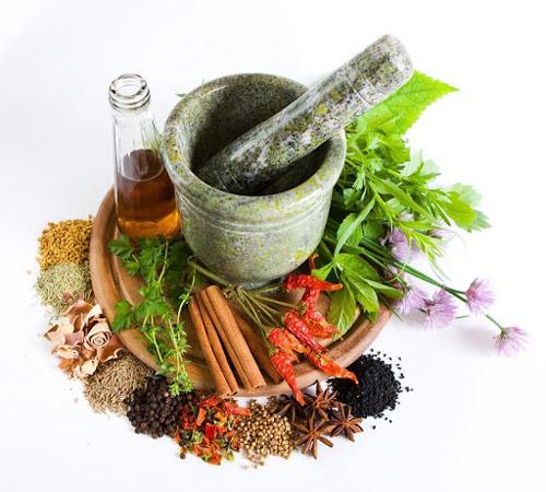 Ayurvedic - Export Ayurvedic Medicines from IndiaAyurvedic