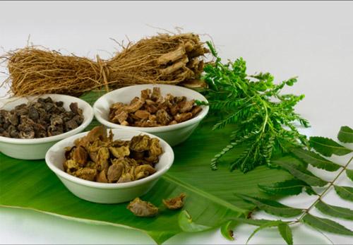 ayurvedic products exportersayurvedic products exporters
