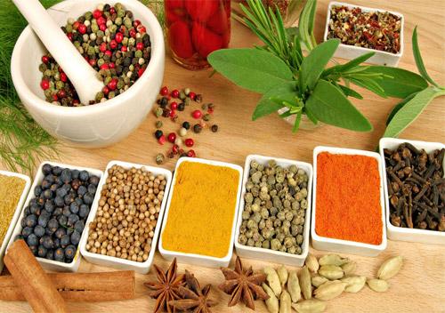 ayurvedic herbal medicine suppliersayurvedic herbal medicine suppliers
